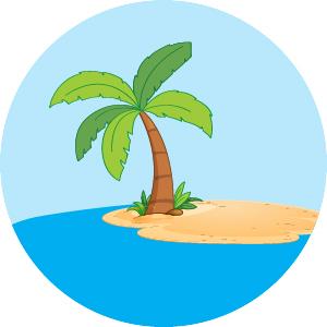 palm tree on desert island