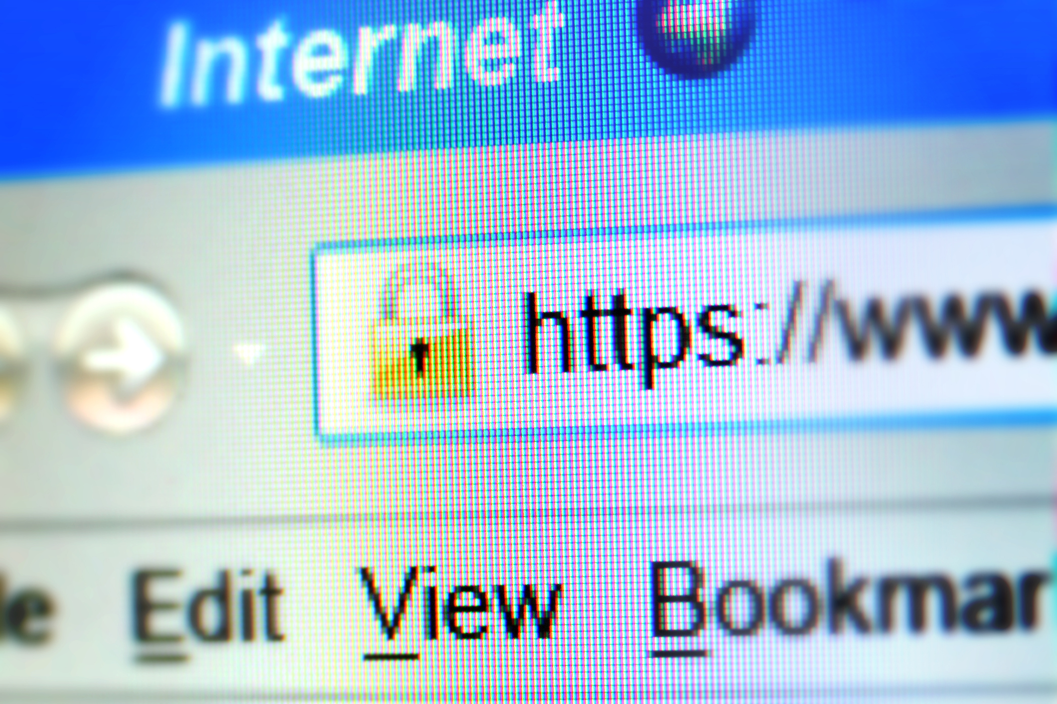Double symbol of a secure Internet connection: the padlock and S letter on https. Computer screen with selective focus on RGV pixels visible.