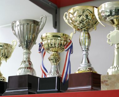 Group of 5 trophies